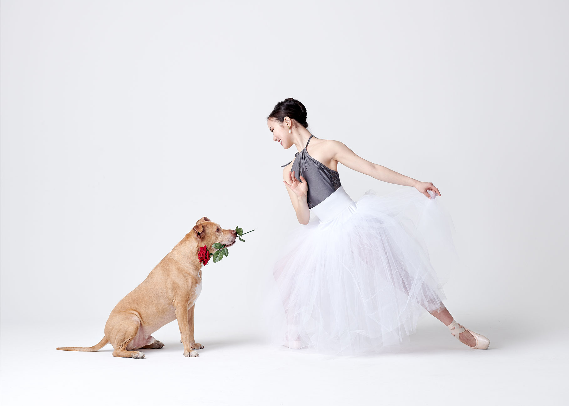 Dancers_and_Dogs_05