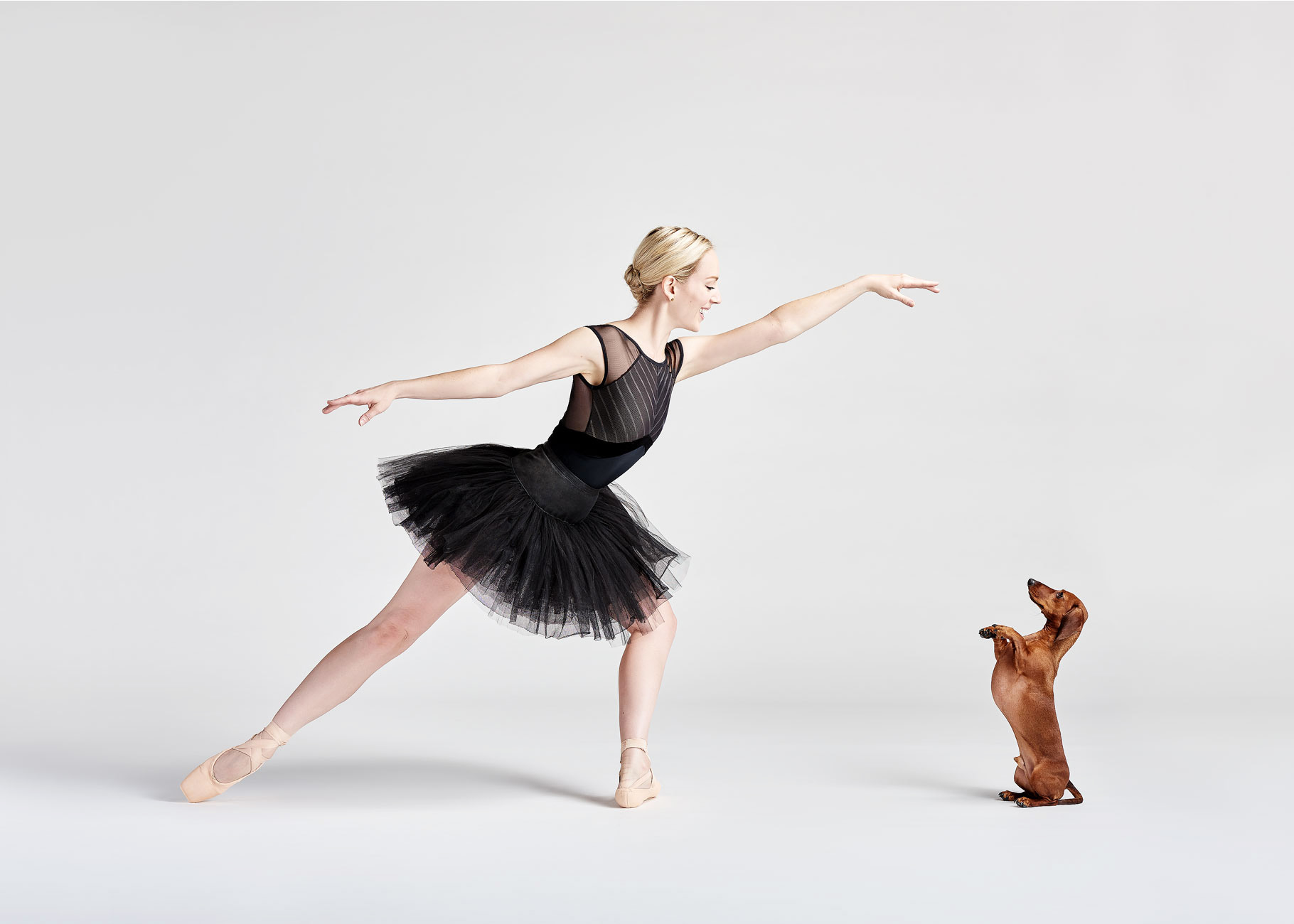 Dancers_and_Dogs_14