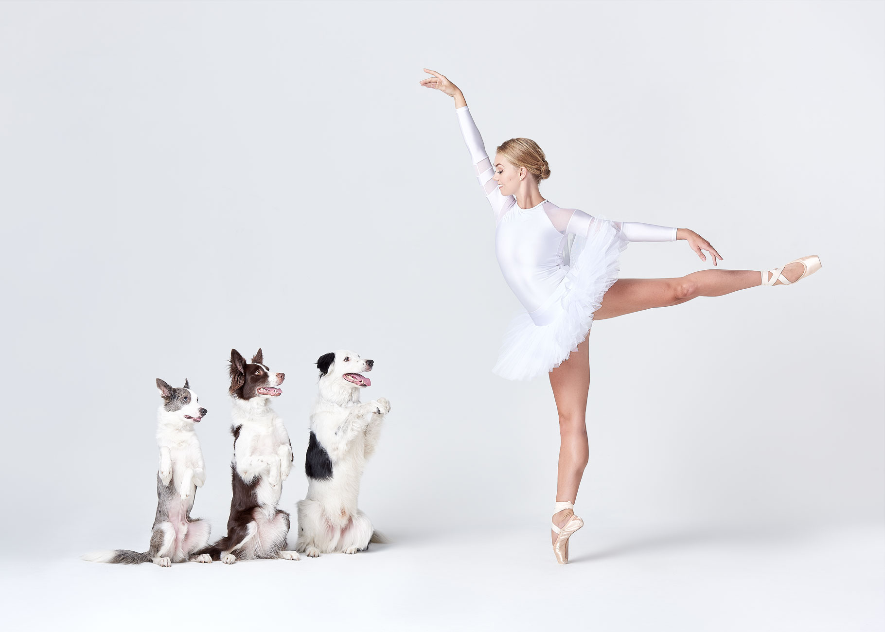Dancers_and_Dogs_15